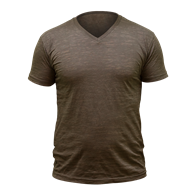 Picture of Men's V-Neck